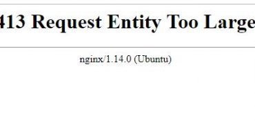 [Nginx] 413 Request Entity Too Large